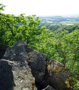 Blick von der Milseburg Richtung Fulda